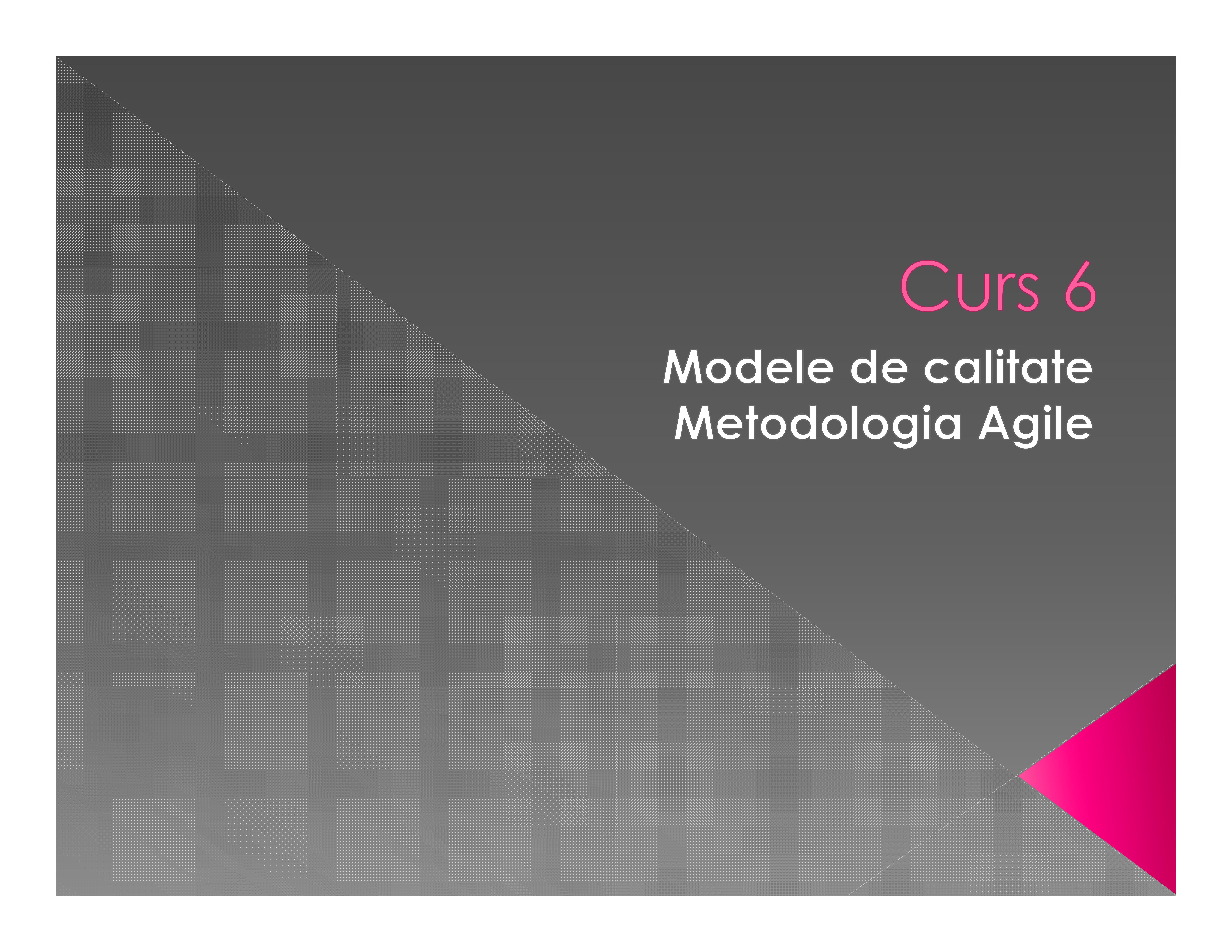Modele de calitate. Metodologia Agile